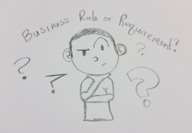 Business Rules Vs Business Requirements